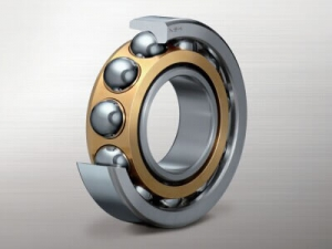 Bearing for Pumps and Compressors